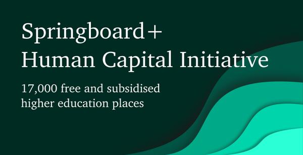 springboard-lead-export.png